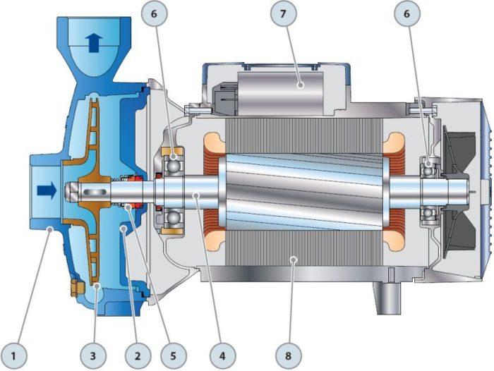 Схема строения центробежного насоса